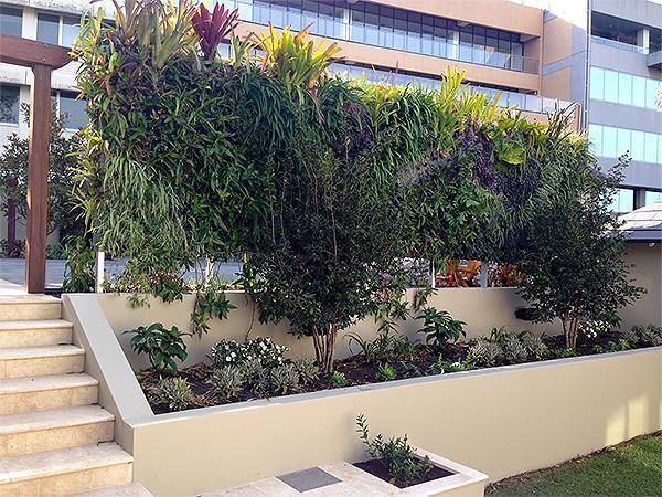 Vertical growing across Greenwalls
