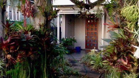 Modern day plant hunter, horticulturist and nursery & plantsman Bruce Dunstan's epiphytic encrusted from gate in Nundah, Brisbane