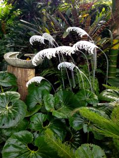 Toetoe ceramic garden art