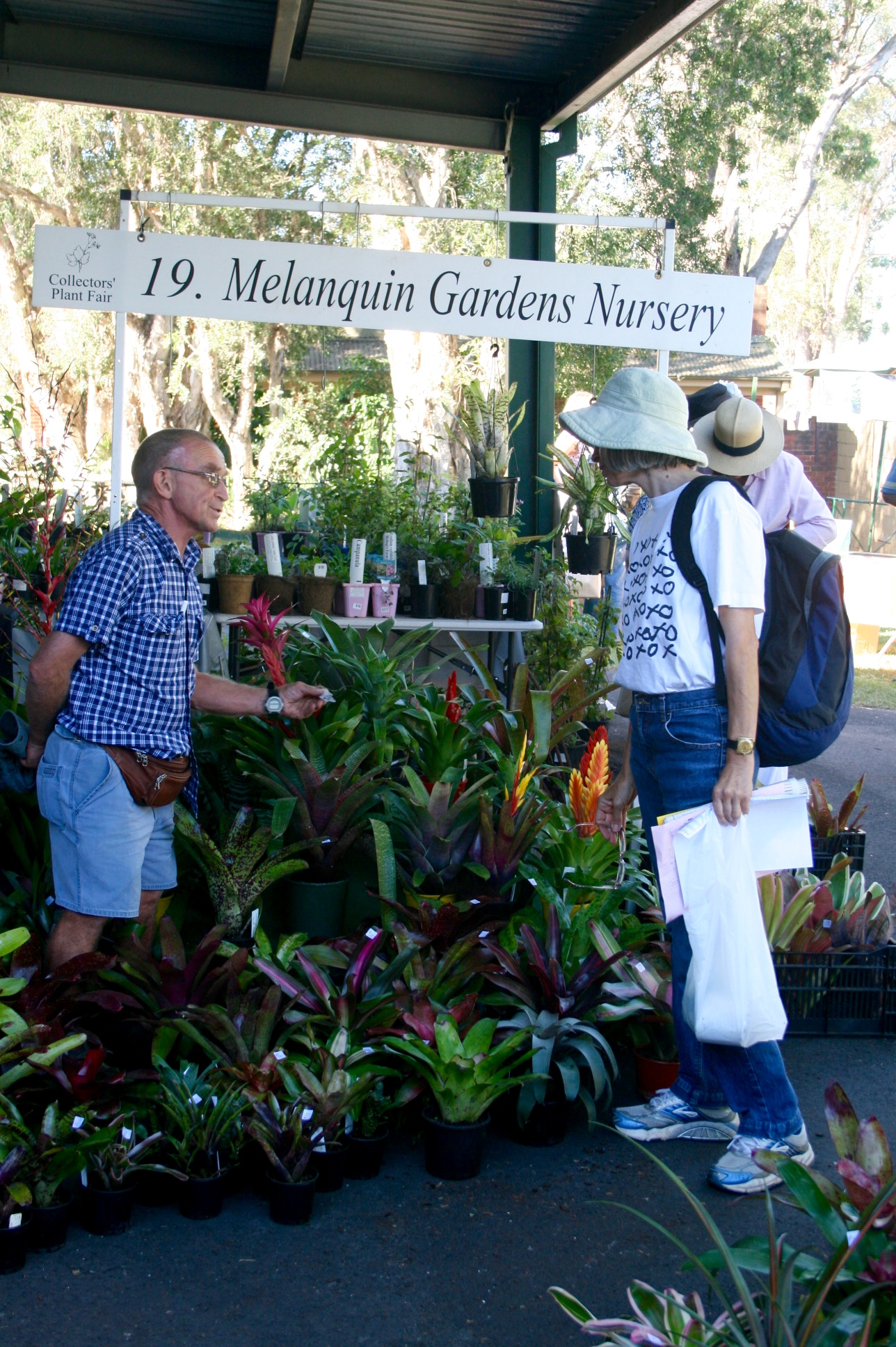 Gary Flemming at Collectors Plant Fair will be selling at Concord Bromeliad Fair