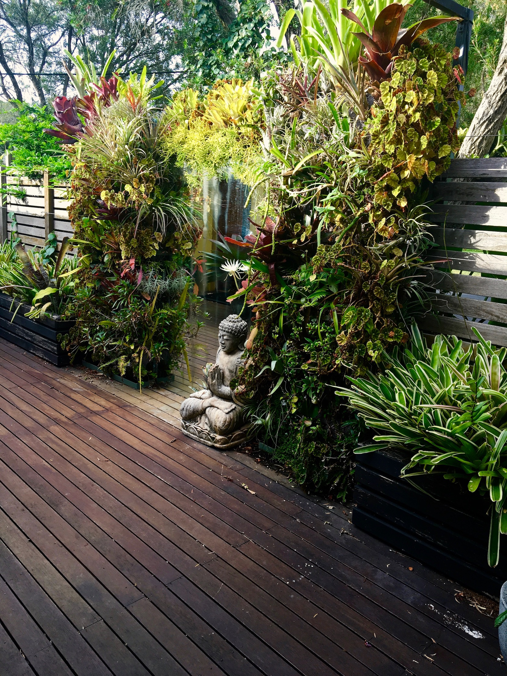 'Sea-Changer' Mirror Deck with epiphyte loaded greenwalls