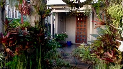 Modern day plant hunter, horticulturist and nursery & plantsman Bruce Dunstan's epiphytic encrusted from gate in Nundah, Brisbane